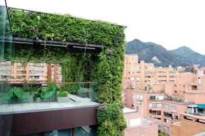 Căn hộ 11 tầng được 'bảo hộ' bởi cây xanh 4