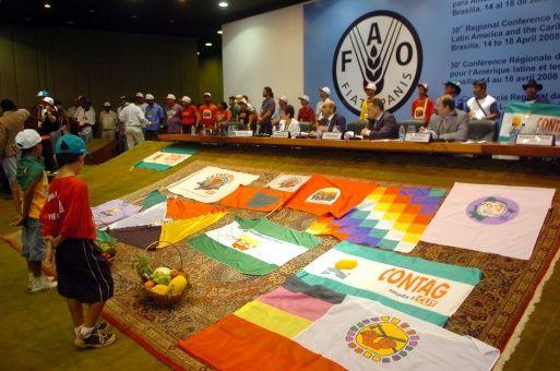 FAO inicia sesiones del Comité de Seguridad Alimentaria Mundial