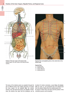 Libros Medicina Color Atlas Of Anatomy A Photographic Study