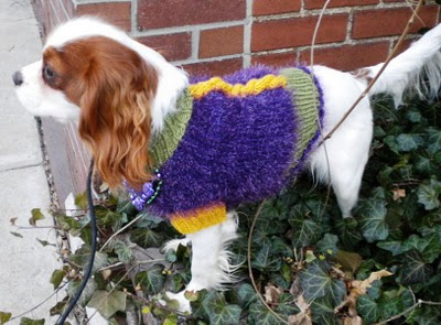 Miss julia s patterns free patterns everything for dogs coats