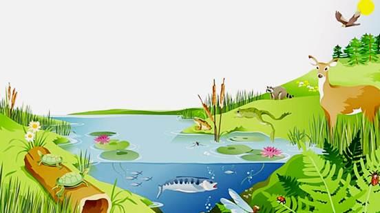 Pengertian Ekosistem Buatan Contoh Ciri Terlengkap