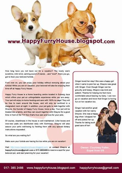 HAPPY FURRY HOUSE: Scooby - Corgy