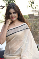 Sony Charishta in Brown saree Cute Beauty   IMG 3592 1600x1067.JPG