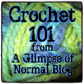 A Glimpse of Normal Blog, Summer Series, Crochet 101, Part 5