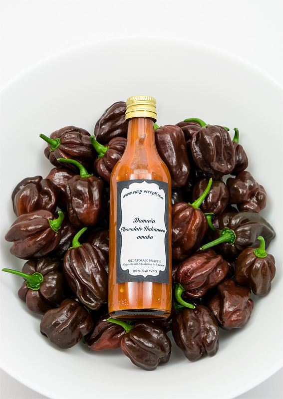 Chocolate habanero sauce - homemade with chili in bowl