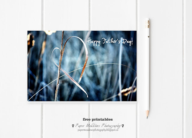 Paper Meadows Photography Blog- Free Printable Father's Day Card