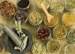 10 hierbas que equilibran la tiroides, adrenales y hormonas femeninas.