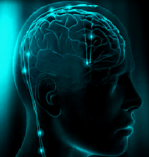 Dalam artikel ini akan membahas tentang manusia adalah mahluk berfikir. Mengapa manusia perlu berfikir dan pentingnya berpengetahuan. Selain itu membahas proses berpikir manusia menurut filsafat, tujuan berpikir apa itu manusia animal rational serta tingkatan berpikir manusia.