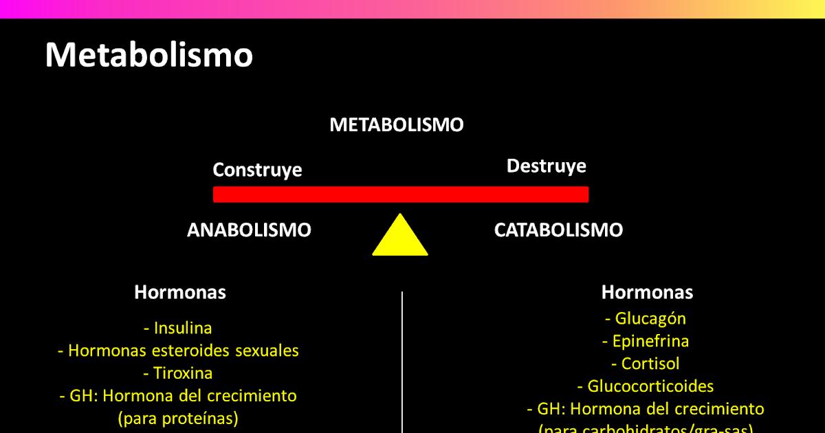 efectos anabolicos y esteroides