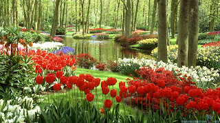 the-most-beautiful-gardens-all-over-the-world-wallpapers-1920x1080.jpg