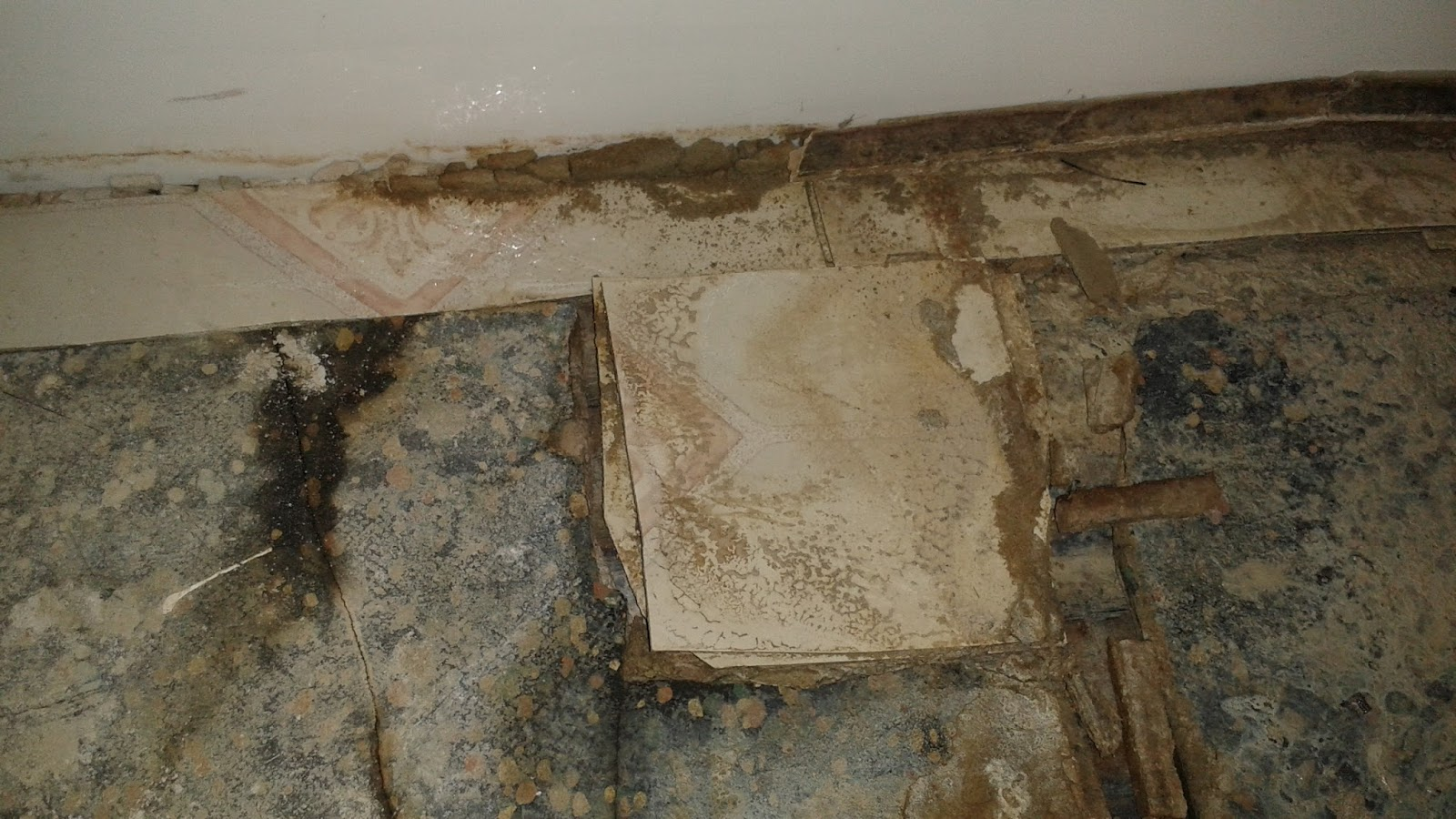Physical evidence ceramic tiles pop up in the bathroom revealing based on the small section and the partial fragments i am seeing it could either have been a sheet or 12 x 12 tile this could be more of a linoleum dailygadgetfo Gallery