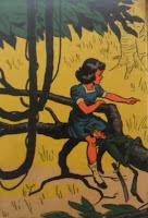 Caçadas de Pedrinho. Monteiro Lobato. Editora Brasiliense. Augustus (Augusto Mendes da Silva). Contracapa de Livro. Década de 1950. Década de 1960.