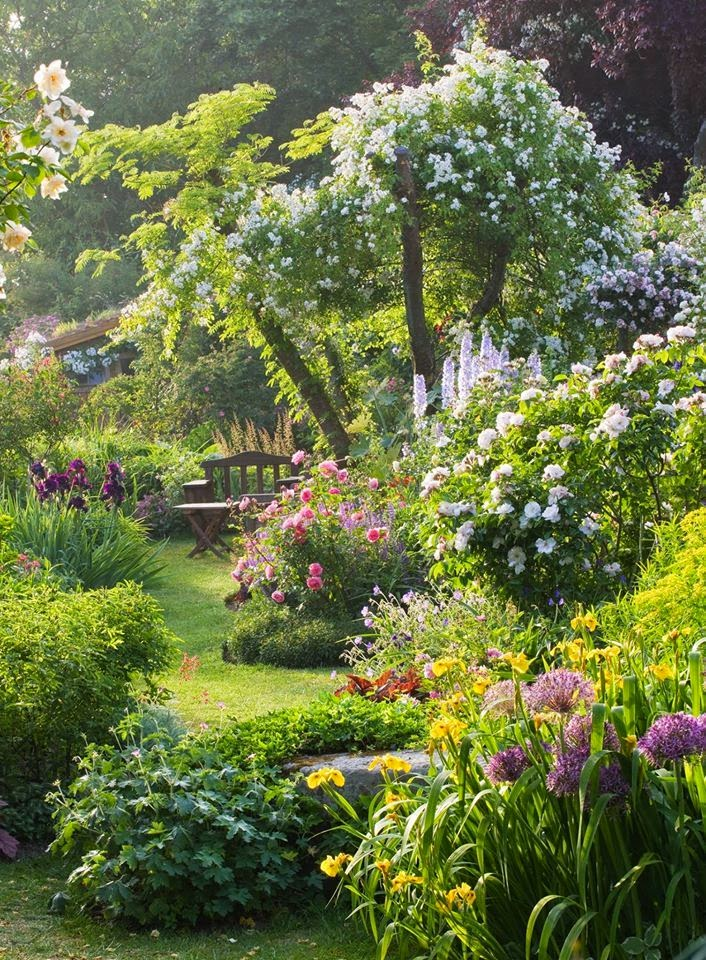 Home garden 40 inspirations pour un jardin anglais for Photo de jardin anglais