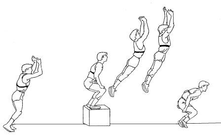 latihan squat depth jump