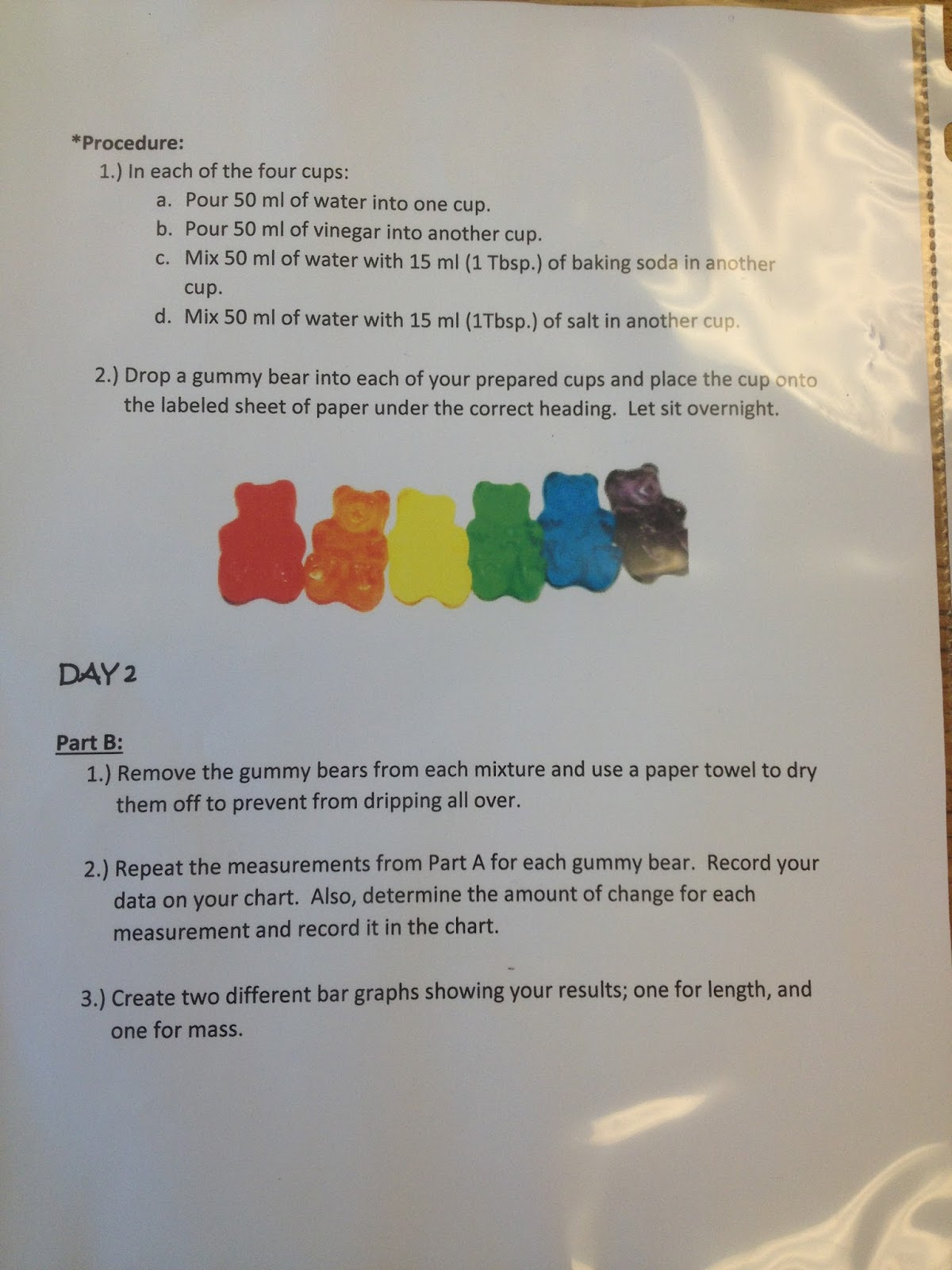 T Gummy Bear Science Experiment Worksheet T Best Free