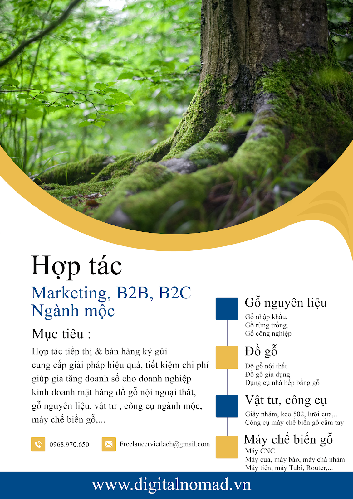 Hợp tác Marketing