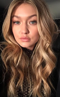 Vitalii Sediuk Ataque Gigi Hadid Después Milan Fashion Week 2016, causado?
