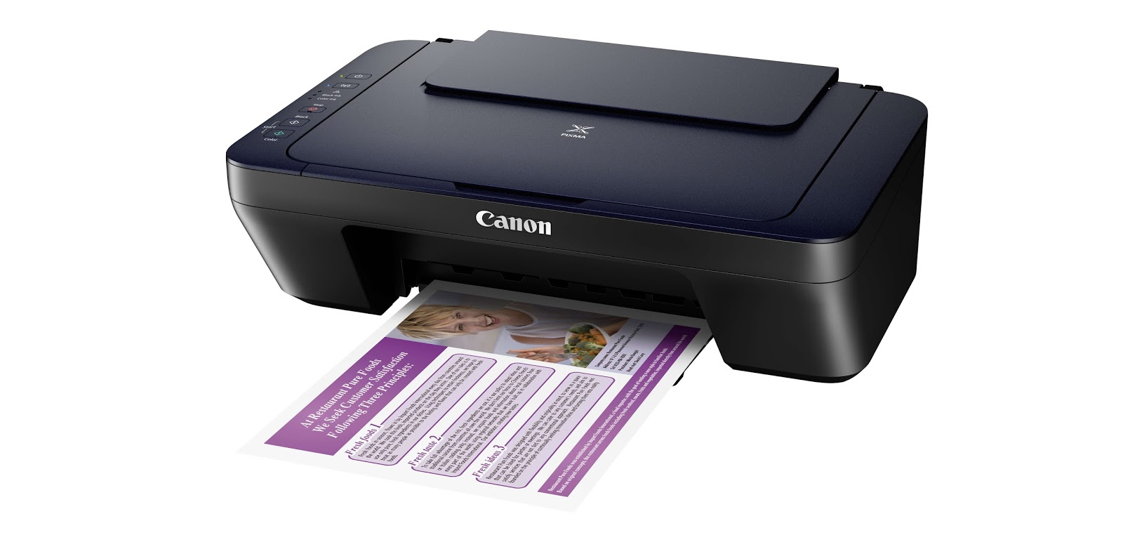 Canon Pixma Ink Efficent E460