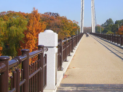 山田池公園 紅葉と美月橋