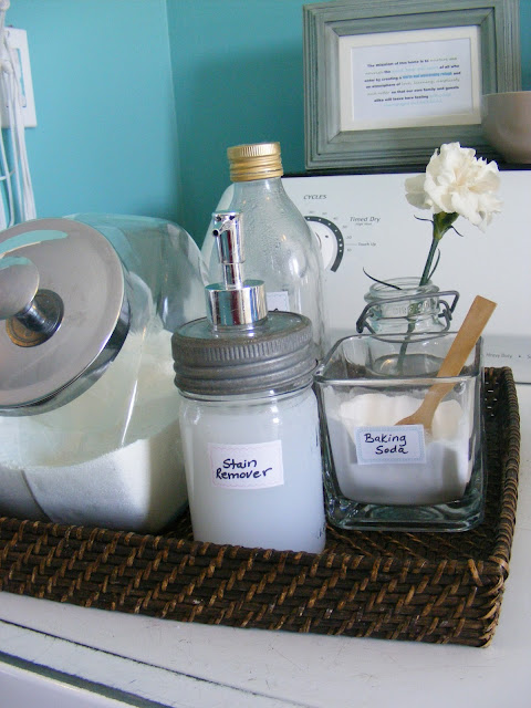 DIY Safe Cleaning Products Stain Remover