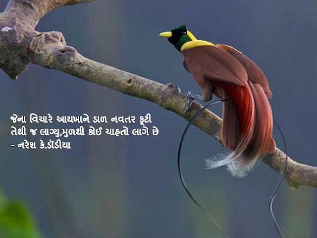 जेना विचारे आयखाने डाळ नवतर फूटी  Gujarati Sher By Naresh K. Dodia