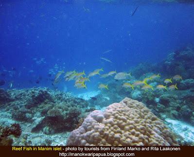 Snorkeling and freediving photography with Charles Roring in Manokwari, Tambrauw and Raja Ampat