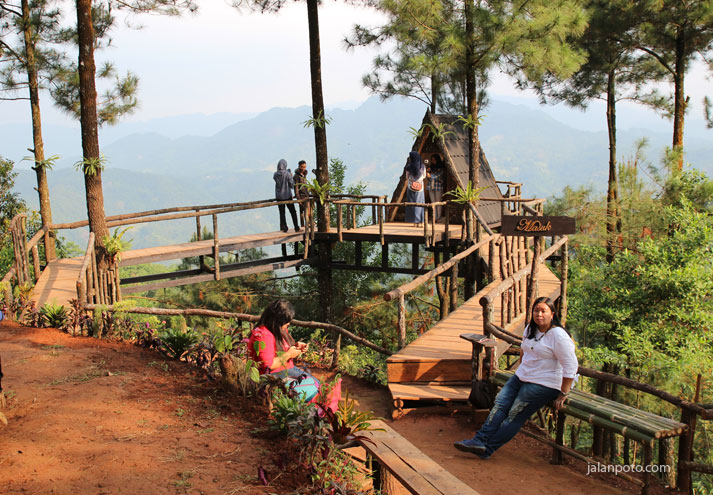 Rumah Pohon pabangbon bogor yang lagi terkenal
