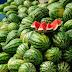 berawal dari buah semangka, nasehat ini amat menyentuh hati memaknai keberkahan