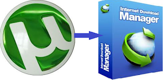 Internet Download Manager 6.25 Build 12 (free) - Download
