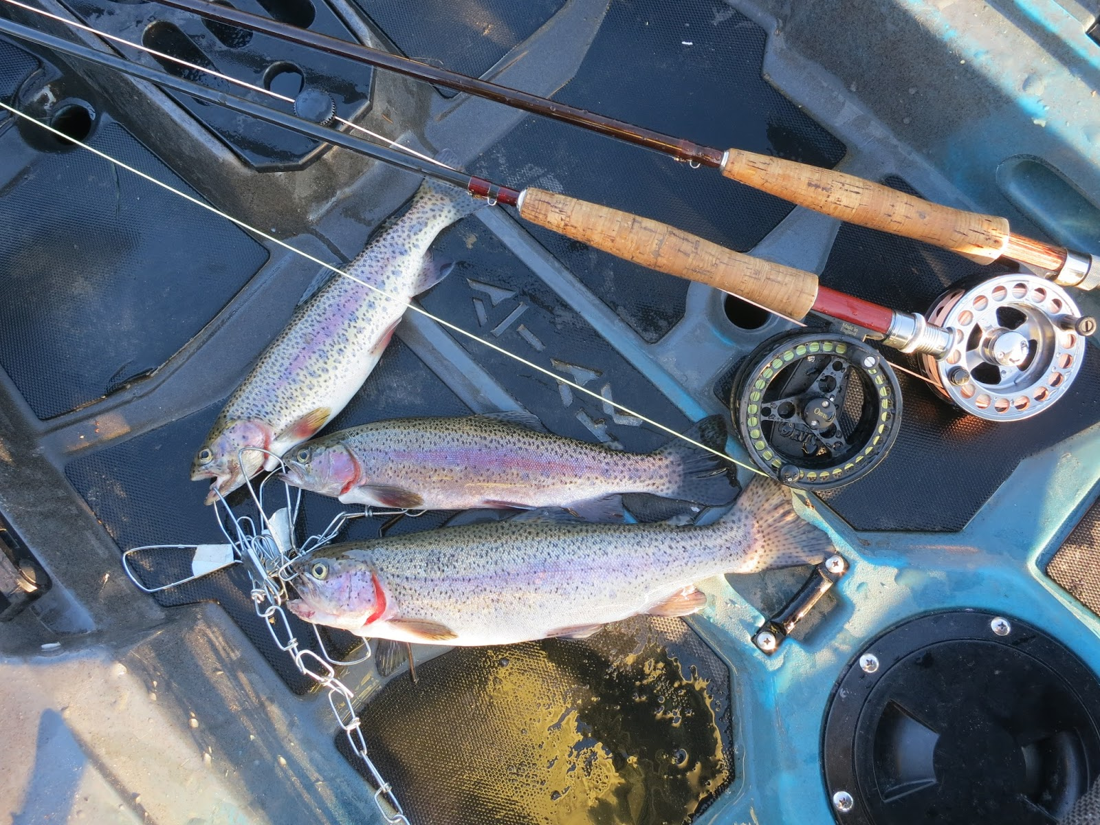 Man powered fishing how to choose the best fly rod weight here are a few of my recommendations on choosing the right fly rod weight for any application nvjuhfo Images