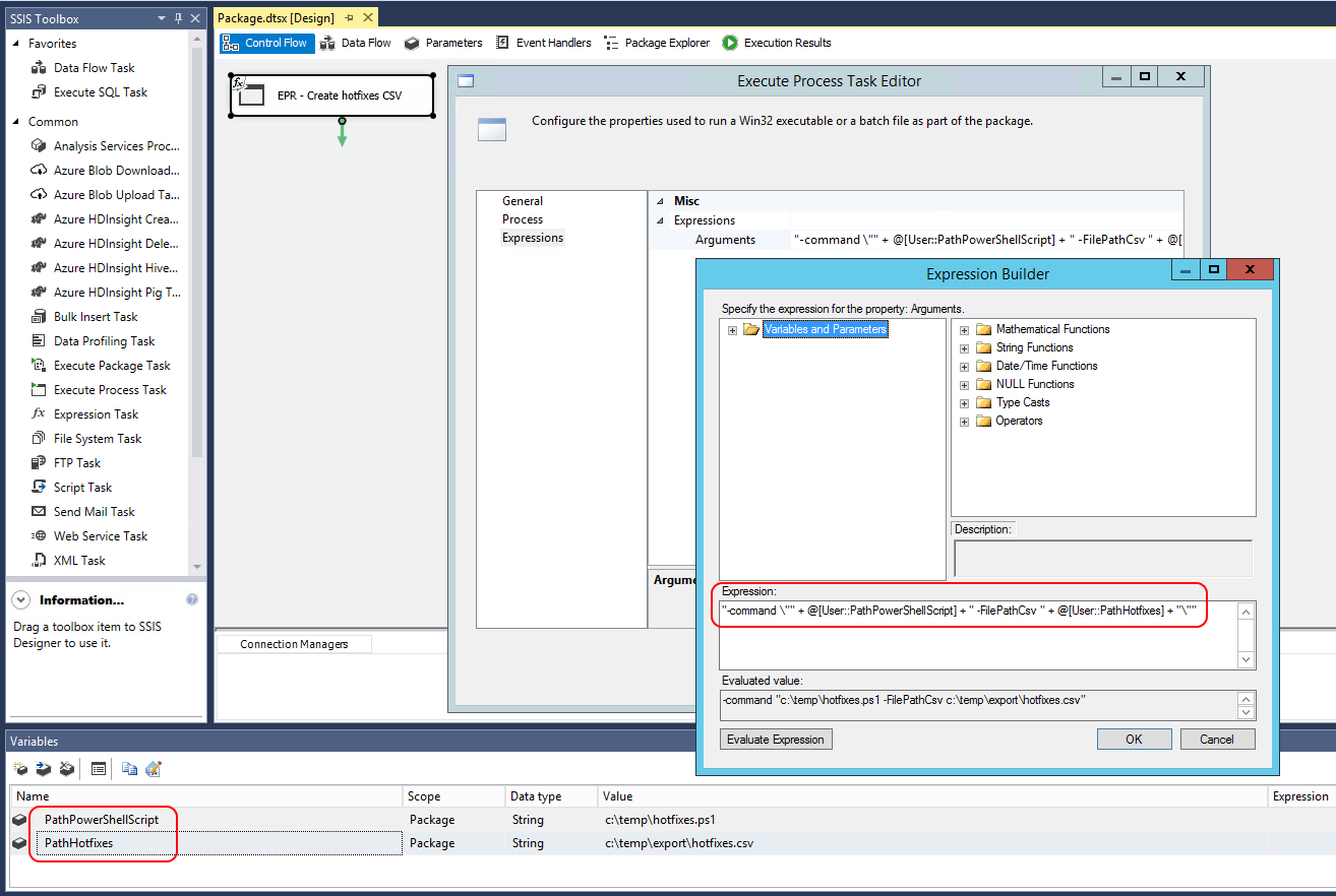 Microsoft SQL Server Integration Services: Executing a