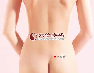 小腸俞穴位 | 小腸俞穴痛位置 - 穴道按摩經絡圖解 | Source:xueweitu.iiyun.com