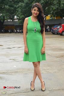 Actress Poonam Kaur Pictures in Green Short Dress at Prayanam Movie Opening  0091.JPG