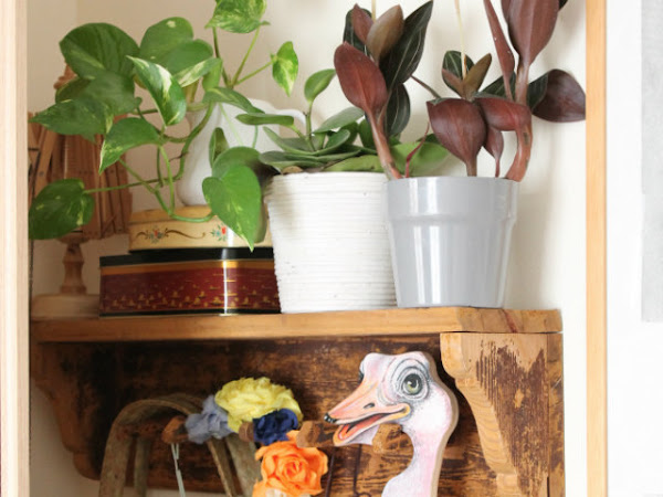 Urban Jungle Bloggers: The Plant Shelfie-November
