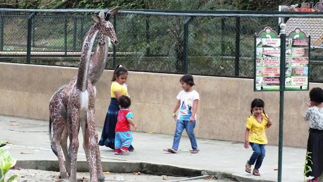 anak-anak sedang bermain di taman hewan siantar