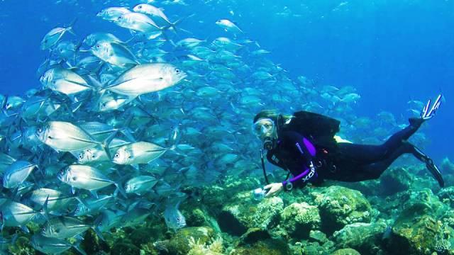 ท่องเที่ยว, แนวหินปะการัง, มัลดีฟส์, สถานที่ดำน้ำ, สถานดำน้ำทั่วโลก, อันดับสถานที่ดำน้ำ, เกาะบาหลี อินโดนีเซีย (Bali, Indonesia)
