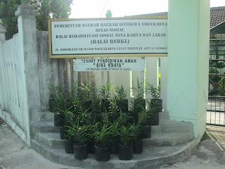 Produk Hasil Bimbingan Pertanian