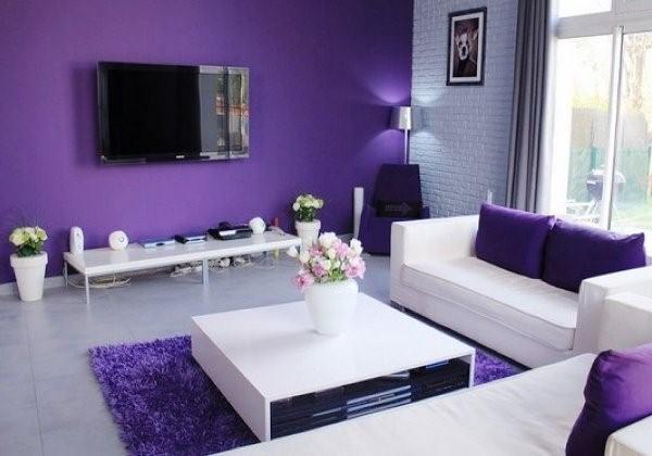 Violet Living Room Furniture Design Ideas