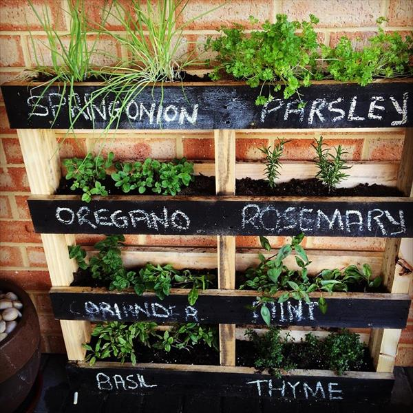 Vertical Gardens Made of Wooden Pallets 9