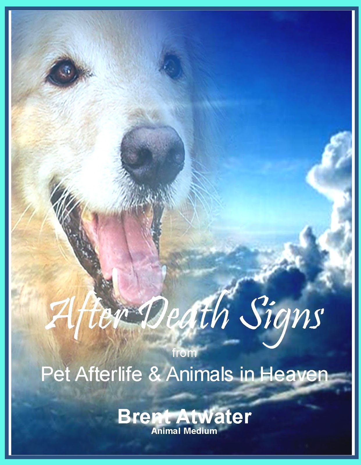 Loss Of A Pet Quote Healing Loss L Cope With Death L Grief Recovery L Afterlife L Live