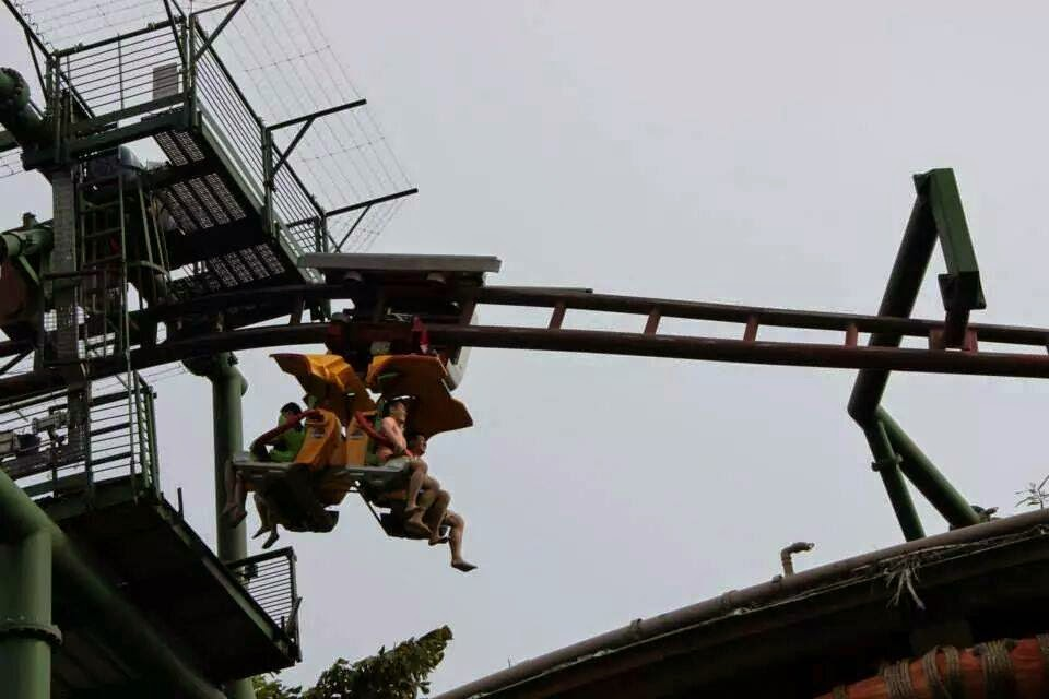 Canopy Flyer Ride The Lost World Universal Studios Singapore
