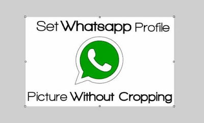 How To Set WhatsApp Profile Picture Without Cropping On Android or iPhone