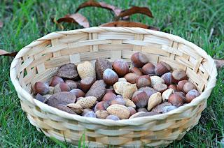 noisette - amande - pate - tartiner- chocolat - recette - bio - naturel