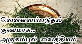 vellai paduthal Maruthuvam: வெள்ளைப்படுதல் நிற்க, பெண்களின் வெள்ளை படுதல் குறைய குணமாக அற்புத தீர்வுகள், nattu maruthuvam, Pregnancy tips in tamil, Natural treatments in Tamil, Natural Cure in Tamil, iyarkai maruthuvam