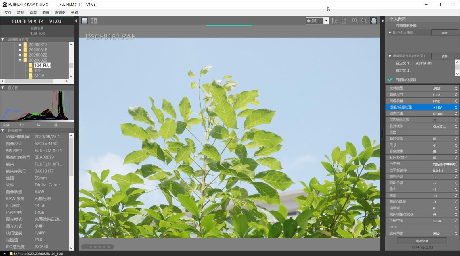 關於相片風格的直出--FUJIFILM X RAW STUDIO ~ 愛攝影