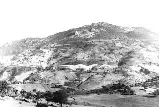 La humedad de los bosques de Grazalema. Después de la guerra civil se hizo un gran  esfuerzo para reforestar la sierra y gracias  a este esfuerzo Grazalema pasó de ser un  pedregal desierto a convertirse en el lugar  donde más llueve de España.