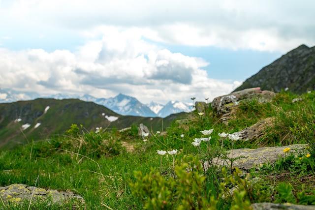 Bergtour Geißstein | Wandern Saalbach | Wanderung SalzburgerLand | Bergwanderung im Glemmtal 16
