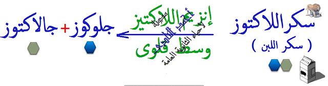 الإنزيمات - متخصصة -  لها تأثير عكسى - اللاكتوز-  مدونة أحمد النادى- أحياء الثانوية العامة