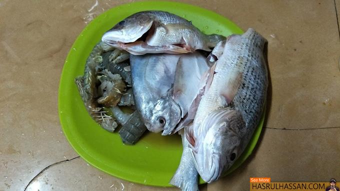 Rezeki Ikan Segar Dari Power Plant Penang