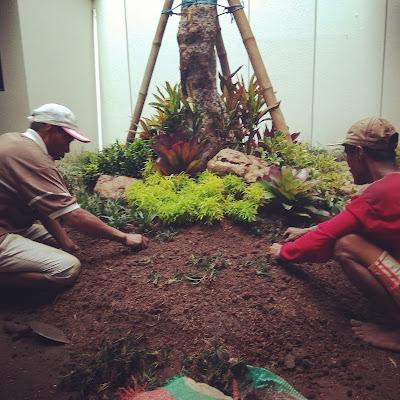 Tukang taman Surabaya, desain taman Surabaya, jasa pembuatan taman
